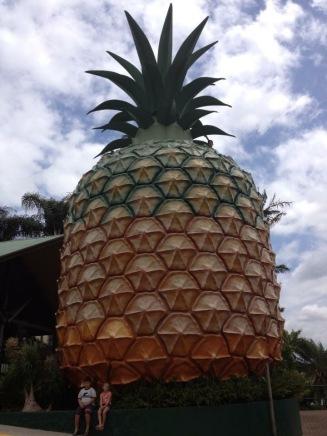 The big Pineapple- Nambour