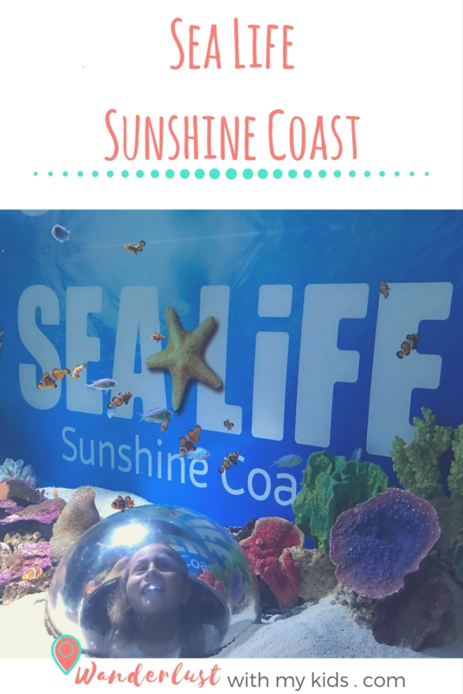 Sea Life 